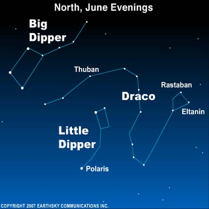 Diagram with Big and Little Dippers and constellation Draco winding between them.