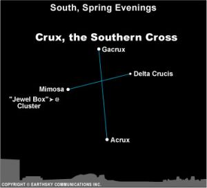 If you live far enough south in the Northern Hemisphere, you'll find the Southern Cross in the south on spring evenings.