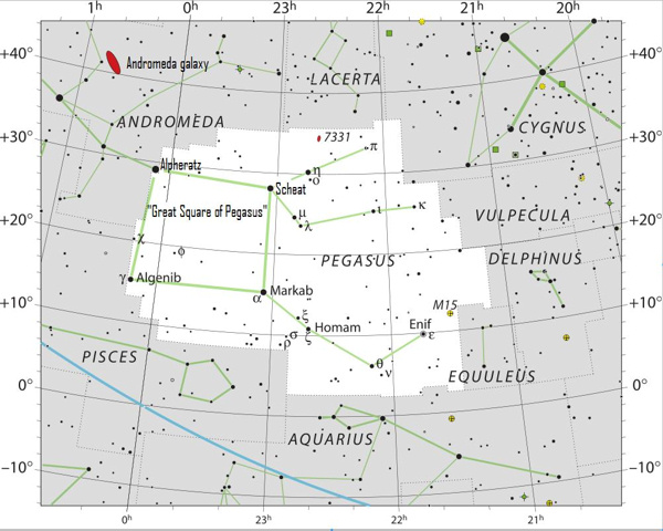Star chart with black stars on white of constellation Pegasus.