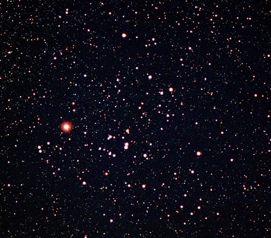 A telescope reveals over 100 stars in the Hyades cluster.  The bright red star here is Aldebaran.  Photo via astronomycafe.net.