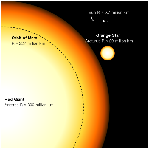If Antares replaced the sun in our solar system, its surface would extend beyond the orbit of the fourth planet, Mars.  Here, Antares is shown in contrast to another star, Arcturus, and our sun.
