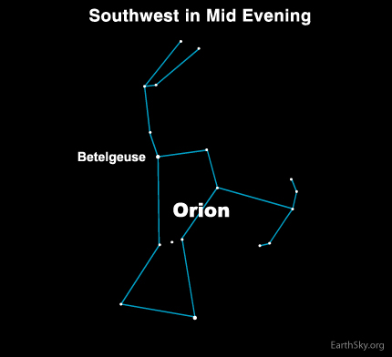 You can recognize Orion for the short, straight row of three medium-bright stars at its midsection. Betelgeuse is the somber red star in the Shoulder of the Hunter.