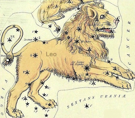 Antique etching of yellow lion with black stars scattered across it.