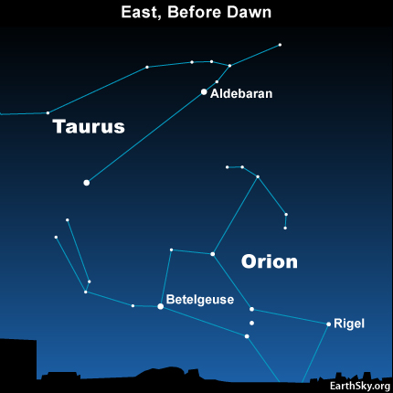Star chart showing Orion and Taurus in the east before dawn in late summer.