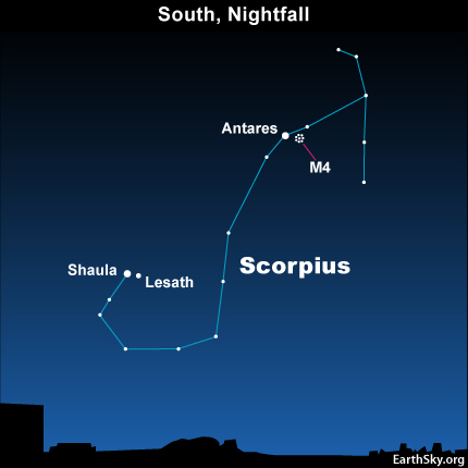 Look first for the Scorpion.  It's in the south on summer evenings as seen from the N. Hemisphere.  Notice Antares, the red heart of the Scorpion.  Then, assuming you have a dark sky, look just to the right of Antares for M4.