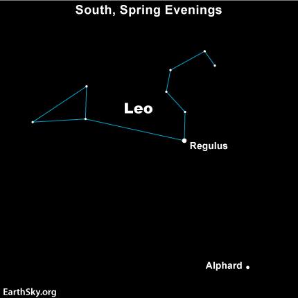 Star chart showing constellation Leo with star Alphard below.
