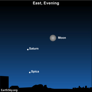 Moon, Saturn and Spica