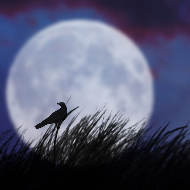 What are the full moon names? | Astronomy Essentials | EarthSky