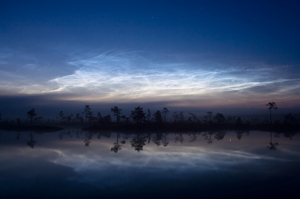 Noctilucent clouds, Estonia. Image credit: Martin Koitmä.
