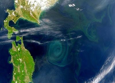 pacific ocean from space  Emanuele Di Lorenzo explains