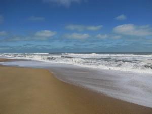 North Carolina beach.  Image Credit: ksr8s