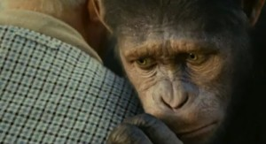 """""""Rise of the Planet of the Apes"""" movie puts spotlight on primate behavior."""