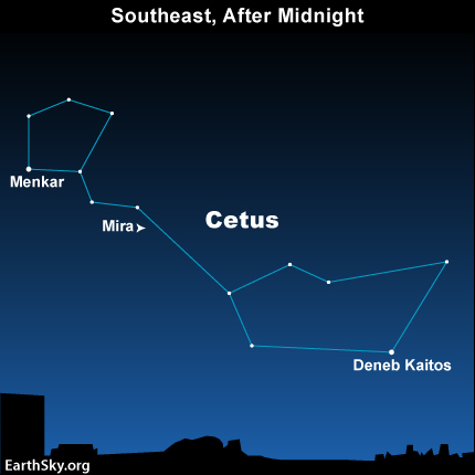 In late July and August 2013, Mira's brightness should be at its peak. You should be able to see it with the eye. Mira's constellation, Cetus, will be in the southeast after midnight - or at its highest in the south before dawn.