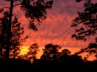 Sunset in early fall making the entire landscape appear red. Image Credit: Matt Daniel