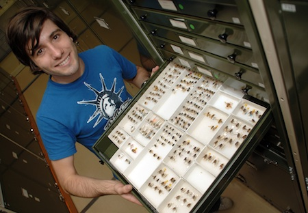 Entomologist Bryan Lessard of the Australian National Insect Collection, who first described 'Beyoncé fly.''