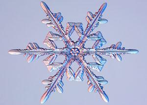 How do snowflakes get their shape? | Earth | EarthSky