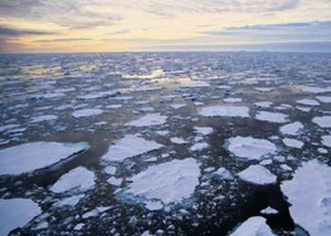 melting_ice_Arctic