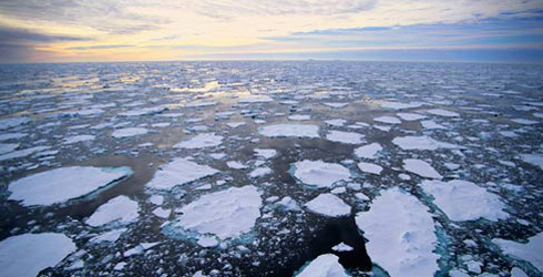 Melting ice in the Arctic in 21st century