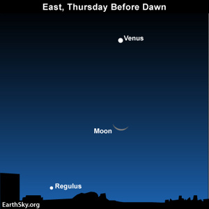 Look for the Beehive star cluster near Venus before dawn on Thursday, September 14