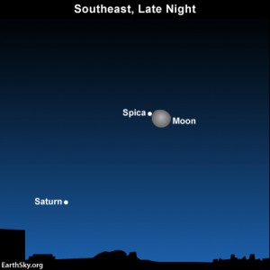 Moon, Saturn and Spica near the waning gibbous moon on Thursday, February 28