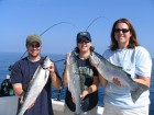 Lake Huron salmon fishing in 2005