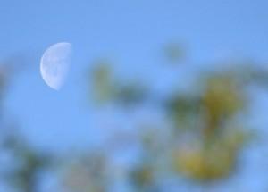 Daytime moon from Italy via Alessandro Cailotto