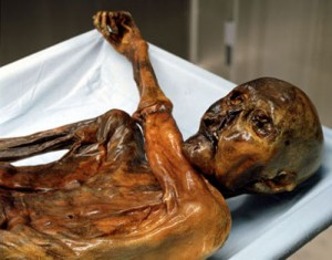 World's oldest blood found in 5,300-year-old mummy. © South Tyrol Museum of Archaeology