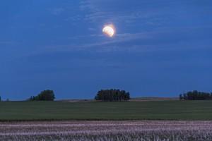 Partial eclipse June 4, 2012.  Image Credit: Alan Dyer.