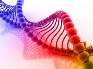 DNA double helix.  Image via Shutterstock