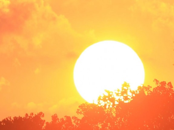 Large bright white sun against the fiery yellow sky, silhouettes of orange tree.