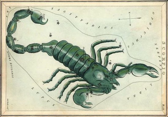 Scorpius, via Constellation of Words