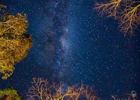 Milky Way in Australia via Erin Cole