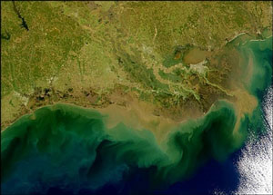 algaebloom_nasa_300