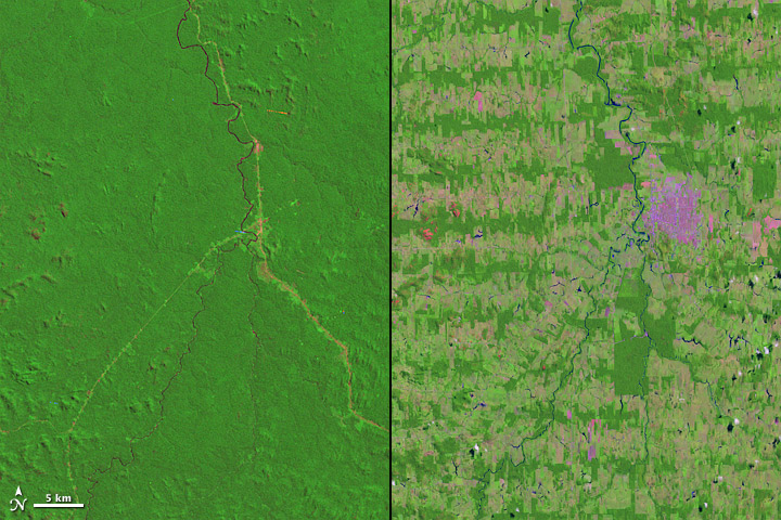 Amazon deforestation 1975 to 2012 from space | Earth ...