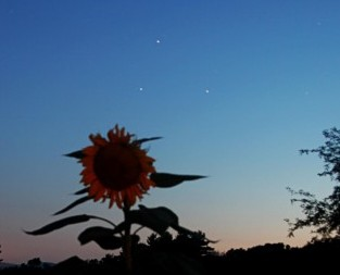 Mars, Saturn, Spica in early August via Eileen Claffey