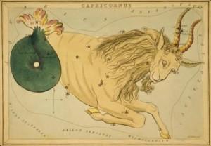 Capricorn-Large