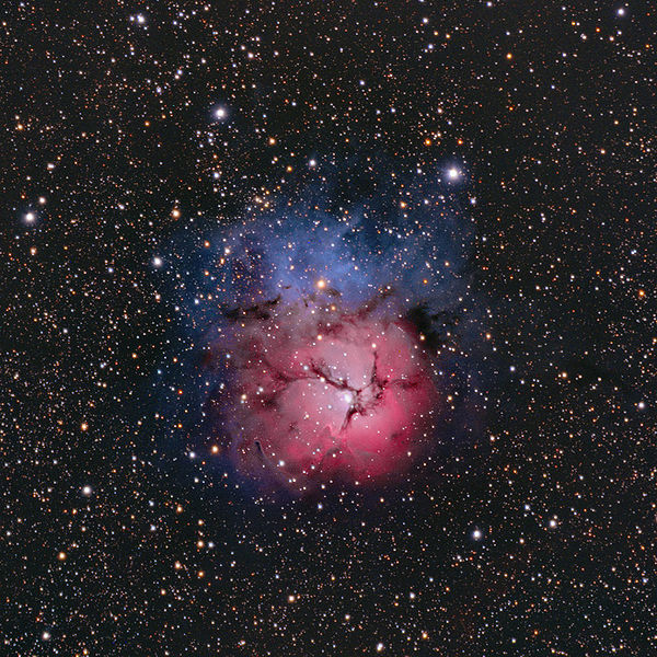 Here's a gorgeous photo of the Trifid Nebula, M20, as seen through an amateur telescope.  Photo by Hunter Wilson via Wikimedia Commons.