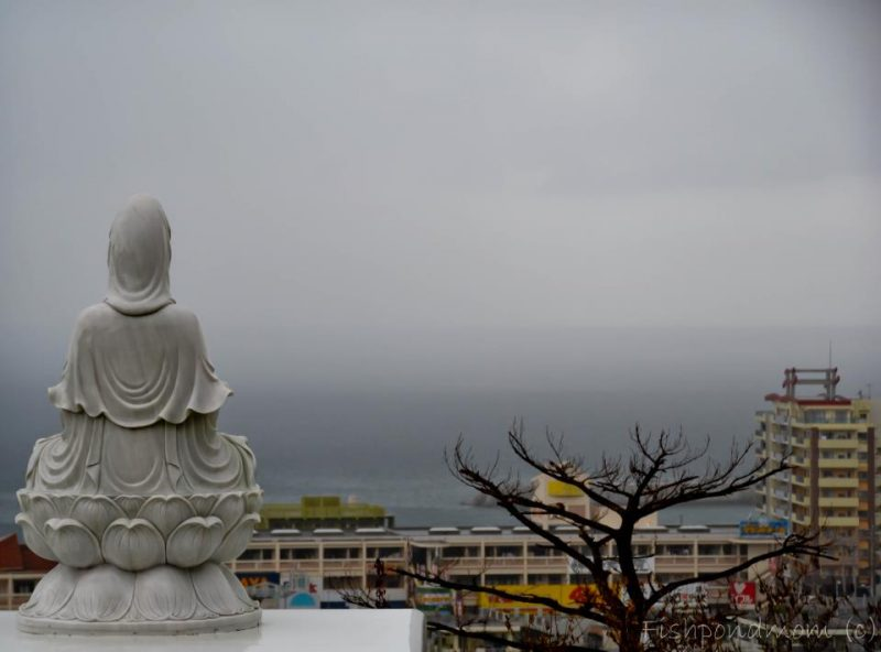 Back of stone statue of a person seated in a lotus, with foggy sky in distance beyond buildings.