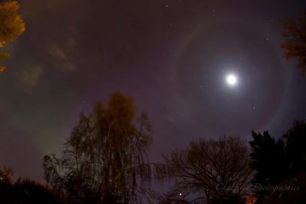 Distant moon with halo, and greenish patterns in the partly clouded sky above trees.