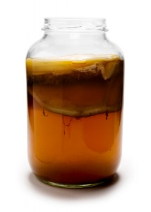 Someone else's kombucha. Mine still has a week to go before looking this fabulous. Image: Mgarten.