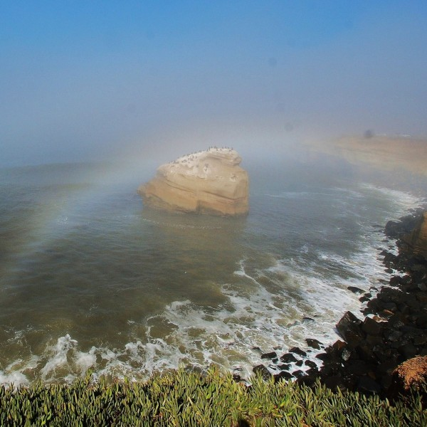 View larger. | Fogbow seen over Sunset Cliffs in San Diego on October 15, 2012 by EarthSky Facebook friend Jim Grant.  Thank you, Jim.