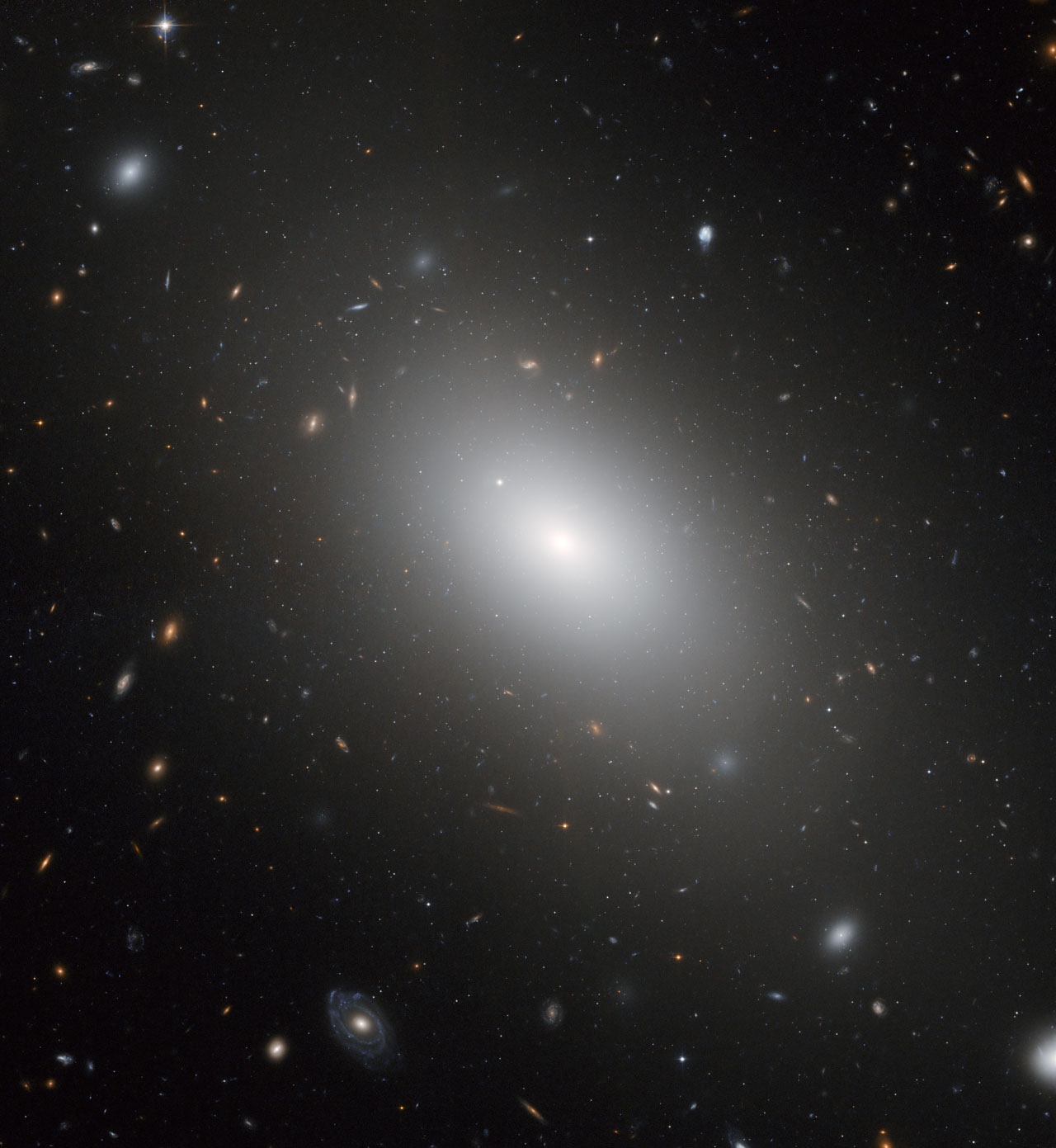 Giant elliptical galaxy NGC 1132