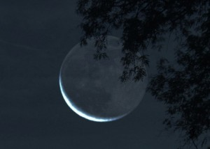 Old moon basking in earthshine.