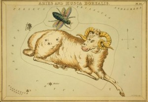 Aries the Ram. Image credit: Old Book Art image Gallery