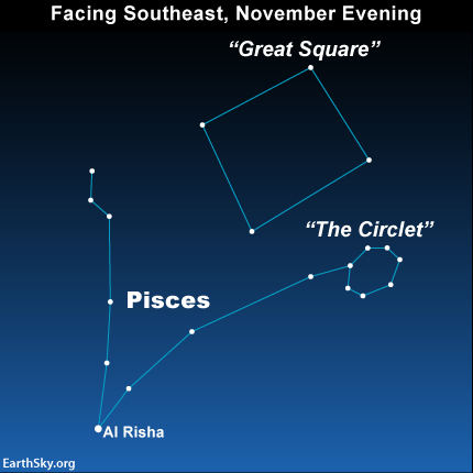 The constellation Pisces appears in the shape of the letter V. Al Risha lies at the tip of the V, where the two lines come together.  You might also notice The Circlet in Pisces.