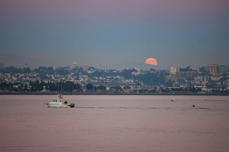 Earth's shadow and Hunter's Moon rise from EarthSky Facebook friend Cattleya Flores Viray in San Diego.
