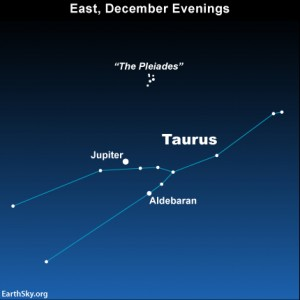 Look eastward as soon as darkness falls for the planet Jupiter in front of Taurus the Bull