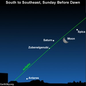 The waning crescent moon shines between Slica and saturn in th epredawn sky on Sunday, January 6