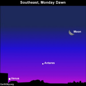 The bow of the waning crescent moon points to Venus' place near the horizon