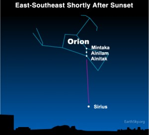 Star chart showing Orion with a line to point out Sirius.